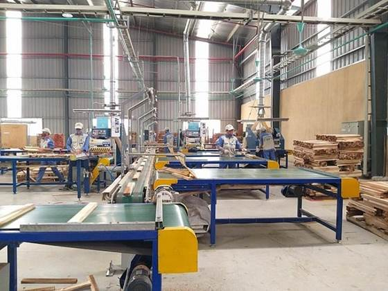 máy gia công gỗ phổ biến