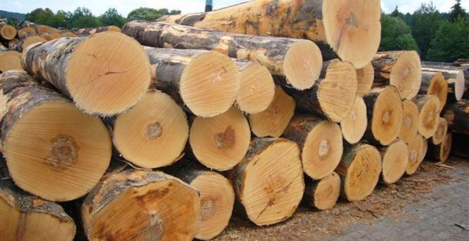 Giá máy xẻ gỗ tròn nhiều lưỡi là bao nhiêu?